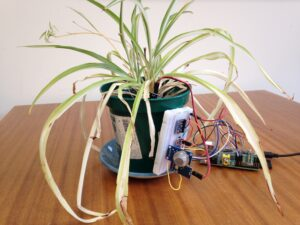 Potted plant with digital moitoring system attached to the side